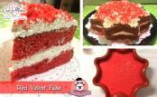 Red_velvet_fake_a_forma_di_stella_di_Litz
