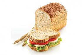 stampo per sandwich